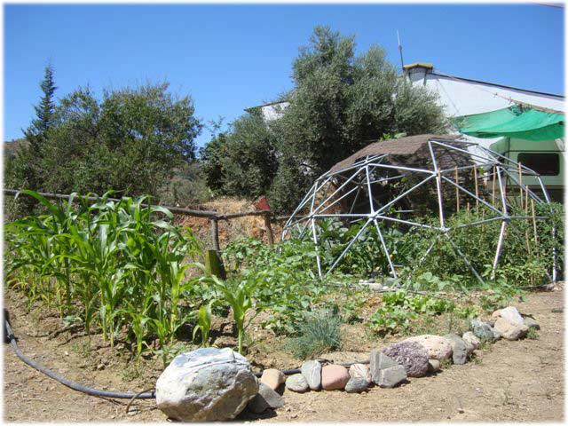Geodesic Domes With Plant Cover Dome Design